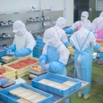 就職・転職に!食品会社や食品工場での品質管理おすすめの注目の本
